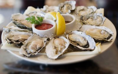 Oysters, Yummy Little Beasties